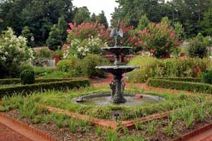 State_Botanical_Garden_of_Georgia_001