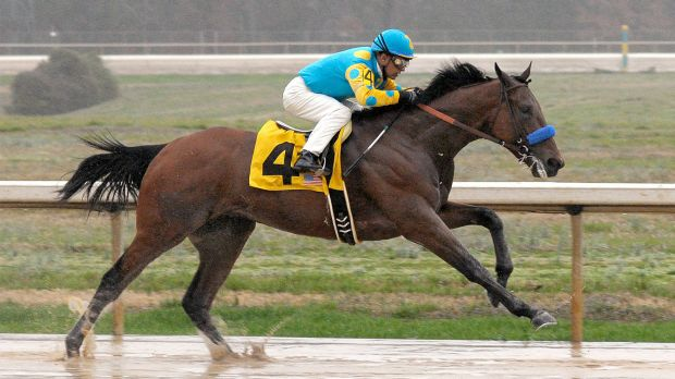 031715-horses-American-Pharoah-pi-mp.vadapt.620.high.39